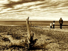 Afternoon stroll (Earlette) Tags: ocean family winter sky beach sepia clouds walking children sticks flickr afternoon natural sunday atmosphere australia 2006 scene driftwood nsw newsouthwales dreamy stroll oldbar apcomp apcompnsw apcompnsw2006 apcompnsw2006octoberb apcompnsw2006october apcompnsw2006octoberbsecond