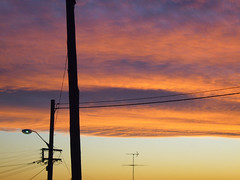 telegraph poles (AS500) Tags: sunset sydney poles telegraph ryde testpetal
