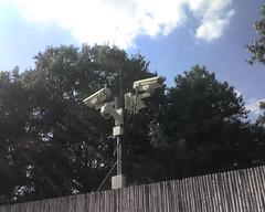 camera zoo washingtondc surveillance security