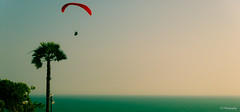 Untitled (.KiLTRo.) Tags: distritodelima departamentodelima peru kiltro paraglading sky sea beach ocean palm outdoor panoramic red tree fly water