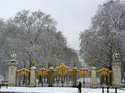 Buckingham palace_06