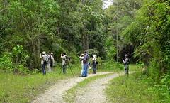 Pajareros [Birders] (barloventomagico) Tags: southamerica venezuela birders marcaribe caribbeansea suramérica neotropic pajareros estadomiranda northernsouthamerica neotrópico nortedesuramérica parquenacionalmacarao macaraonationalpark sectorlagunetadelamontaña