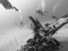 Diving in Oahu (Corsair) (chylle) Tags: hawaii oahu scuba diving corsair wreck gopro hero4silver