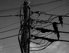Wired (farwest56) Tags: sky clouds cornwall noir olympus wires electricity hook telegraphpole bude polythene sz31mr