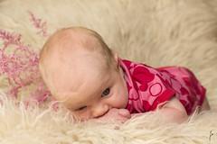 Midsummer baby (jannaheli) Tags: baby girl suomi finland helsinki child little homestudio lapsi vauva tyttö pieni laajasalo strobist kotistudio valaisu nikond3100 midsummerbaby juhannustoukka