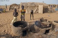 PEIX FUMAT EN UN POBLE BOZO (Mali, juliol de 2009) (perfectdayjosep) Tags: mali bozo afrique nigerriver áfrica àfrica perfectdayjosep ríoníger riuníger