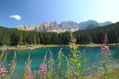 Karersee (Andr Meiner) Tags: italien italy canon landscape see landschaft sdtirol altoadige dolomiten karersee welschnofen eos60d latemarwald