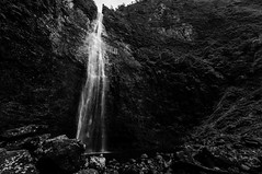 The Big Jump! (nclcocco) Tags: blackandwhite usa monochrome canon person hawaii hole july falls tony waterfalls kauai greenery hi hdr napalicoast 2014 pacificislands kalalautrail hanakapiaifalls hanakapiaitrail npalicoast 5dmkiii canon5dmarkiii 5dmarkiii hanakpaistream nclcocco nicolacocco hanakpaifalls hanakpaitrail