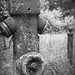 B-Lichtet.de Beelitz-6010