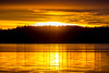 Gold (Jens Haggren (catching up real slow)) Tags: olympus em1 sky clouds water sea trees silhouettes reflections colours morning sun sunrise nacka sweden jenshaggren