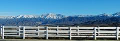 Christmas Snow Panorama, San Bernardino Mts, CA 2016 (inkknife_2000 (8 million views +)) Tags: redlandsca snow mountains dgrahamphoto usa landscapes sanbernardinomountains whitefence fenceline christmasmorning2016