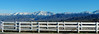 Christmas Snow Panorama, San Bernardino Mts, CA 2016 (inkknife_2000 (7 million views +)) Tags: redlandsca snow mountains dgrahamphoto usa landscapes sanbernardinomountains whitefence fenceline christmasmorning2016