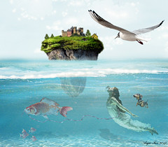 Playing in the Shallows (rubyblossom.) Tags: rubystreasurechallenge71 water sea background swim dog fish pull island rock trees buildings shallows rubyblossom 2017