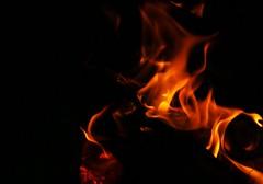 Warmth (little_frank) Tags: warmth fire kvaløya sami sállir whaleisland norway north arctic hot adventure light dark darkness shade flame fiamma llama flamme chama vlam 炎 불꽃 火焰 لهب fuoco حريق feuer fuego fogo brand 火災 brann feu 화재 火 hope winter halo spark alight sparkle sparky flicker flake gleam glimmer rite glitter shine bright glare heat glow hotness fervency flak focus fireplace fireside resistance endurance resist strength withstand endure stay survival persistence survive hardship frontier wild wilderness dream
