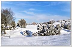 Strahlender Wintertag am Stattberg (Don111 Spangemacher) Tags: winter wolken schnee niedersachsen naturschutzgebiet naturpark niederhaverbeck natur heide heidekreis himmel landschaft lüneburgerheide reisen romantik urlaub