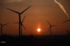 Sunset at Marienleuchte (heikecita) Tags: sunset sonnenuntergang marienleuchte fehmarn beltretter windräder windmill nikond7200 deutschland ostsee balticsea
