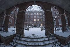 Snow Day (dansshots) Tags: nikon nikond750 dansshots nyc newyorkcity manhattan wideangle rokinon rokinon12mm fisheye greenwichvillage nyu snow snowinnewyork snowinnyc