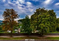 Romantic Strasse - Wurzburg - Giardini della Fortezza di Marienberg (iw2ijz) Tags: germania germany romanticstrasse romantica street stradaromantica strada wurzburg