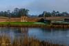 Lake Ickworth Park-3757 (johnboy!) Tags: ickworthpark ickworthhouse ickworth deadtrees nationaltrust