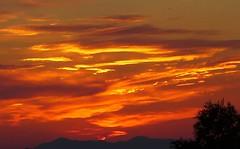 GrEEcE is... (sifis) Tags: greece sakalak athens lumix lx7 nature sunset color