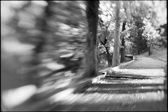 Fuga (|γ|S| GammaSintesi) Tags: nikon fm2 fm2n 50mm lensbaby composerpro sweet50 bokeh blackandwhite bw ilford hp5plus film пленка italia италия italy monocrome pellicola v700 arsimago monobath