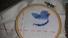 Crafting 365:015 (Jacqi B) Tags: crafts craft365 crossstitch crossstitchbird