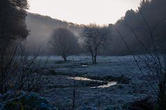 Chez moi (R:v) Tags: france français finistère forêt forest water river morning sky sun sunset sunlight winter tree lumière landscape life cold ice frozen