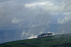 The mists of time (Englepip) Tags: mist cloud trees stand horizon hills landscape countryside outdoors sky land slope blue green silhouetted lancashire bowland england field