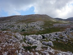 """Grassy rock-strewn slopes • <a style=""""font-size:0.8em;"""" href=""""http://www.flickr.com/photos/41849531@N04/19726449236/"""" target=""""_blank"""">View on Flickr</a>"""
