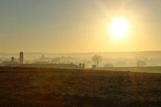 Amish Morning