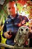 20161231-IMG_5045 (stringer8247) Tags: owl forest harajuku tokyo japan