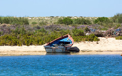 Ilha de Tavira 14 June 2016-0018.jpg (JamesPDeans.co.uk) Tags: digital downloads for licence sand landscape ships fishingindustry riaformosa boats tavira man who has everything coast moorings algarve colour prints sale sea blue beach rope portugal boat estuary europe harbour james p deans photography digitaldownloadsforlicence jamespdeansphotography printsforsale forthemanwhohaseverything