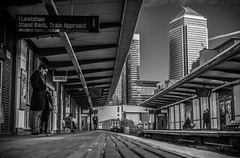 Platform n. Canary Wharf (Nils Reucker) Tags: canary wharf london united kingdom millennium england train subway underground platform station travel waiting morning work travelling queen europe