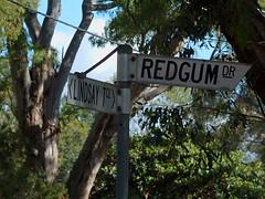 Apt (mikecogh) Tags: belair sign street apt appropriate gumtrees