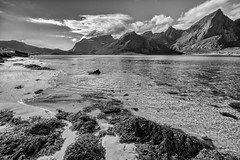 In the crystalline knowledge of you (OR_U) Tags: 2017 oru norway lofoten island fjord water sea beach fleetwoodmac crystal clear mountains coast flakstadpollen bw blackandwhite blackwhite schwarzweiiss monochrome
