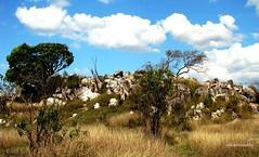 Serra da Canastra/MG -Brasil (Sophie Carrière) Tags: serra cerrado azul verde pedra árvore céu
