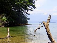 Angra dos Reis (Vinícius Carvalho (Brazil)) Tags: paraíso angra natureza nature mar paz sony hx100v vcarvalho