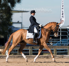 150614_Clarendon_2124.jpg (FranzVenhaus) Tags: horses sydney australia riding newsouthwales athletes aus equestrian supporters riders officials dressage spectatorsvolunteers