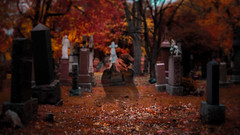 132/365 Ghost (Clement's Photography) Tags: fall ghost automn 365 cimetery 365daysproject