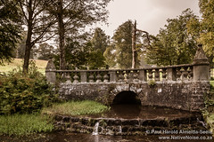 Bridge In Falkland Estate