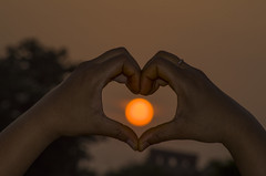 dawn of love (दीपक) Tags: sunset india macro art nature sunrise photography photo deepak pentax firstlove 70300mm tamron orissa nit kumar rout rourkela k50 f456 odisha pentaxart twittertuesday pentaxflickraward pentaxk50 365projectpentax
