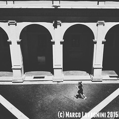 June 28, 2015 at 12:51PM (Follow the New M) Tags: people rome girl architecture youth vintage la chagall arcs | solitaria chiostrodelbramante giovinezza instagramers sh4re