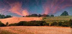landscape (augustynbatko) Tags: summer sky nature colors clouds landscape estate view sommer natur harvest himmel wolken august natura agosto cielo vista landschaft colori paesaggio farben ernte esterno ansicht widok nubi pleinair kolory chmury niebo lato plener krajobraz sierpień imfreien żniwa raccogliere