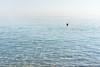 Simply Crete - Tempted? (Cirrusgazer) Tags: morning blue sea summer sunlight mediterranean horizon calm textures greece crete ripples inviting buoy sonya7r fe55mmf18za