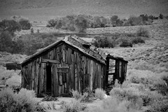 A home in the 'burbs (Marc Briggs) Tags: abandoned monochrome gold mining shack goldmining dsc3576bw