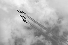 DAS 28410bw (kgvuk) Tags: aircraft devon redarrows dawlish dawlishairshow dawlishairshow2014