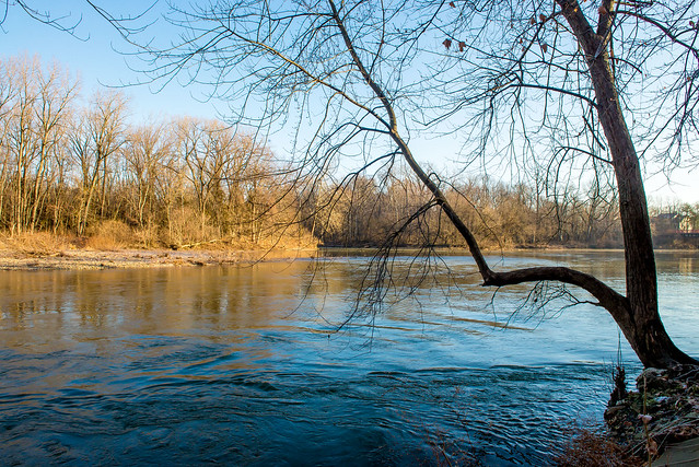 Marott Nature Preserve - White River - December 28, 2016