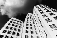 Windows (JeffreyNotJeff) Tags: windows highrise residential condo flat düsseldorf dusseldorf germany bw blackwhite cloud sky