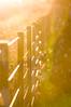 Los Toldos (cuiti78) Tags: los toldos argentina sunset