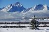 Grand Teton Christmas Tree (DigitalSmith) Tags: tetons grandtetonnationalpark mountains wyoming